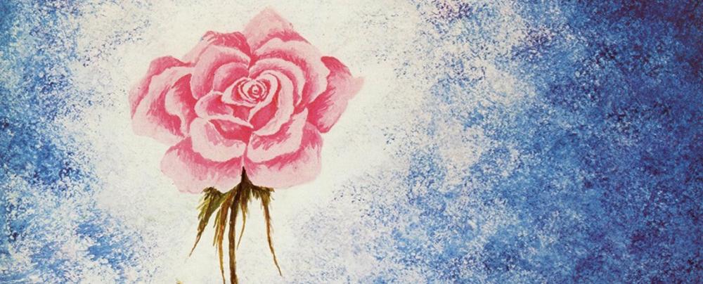 Illustration d'une rose pour l'Opérette Rose de Noël